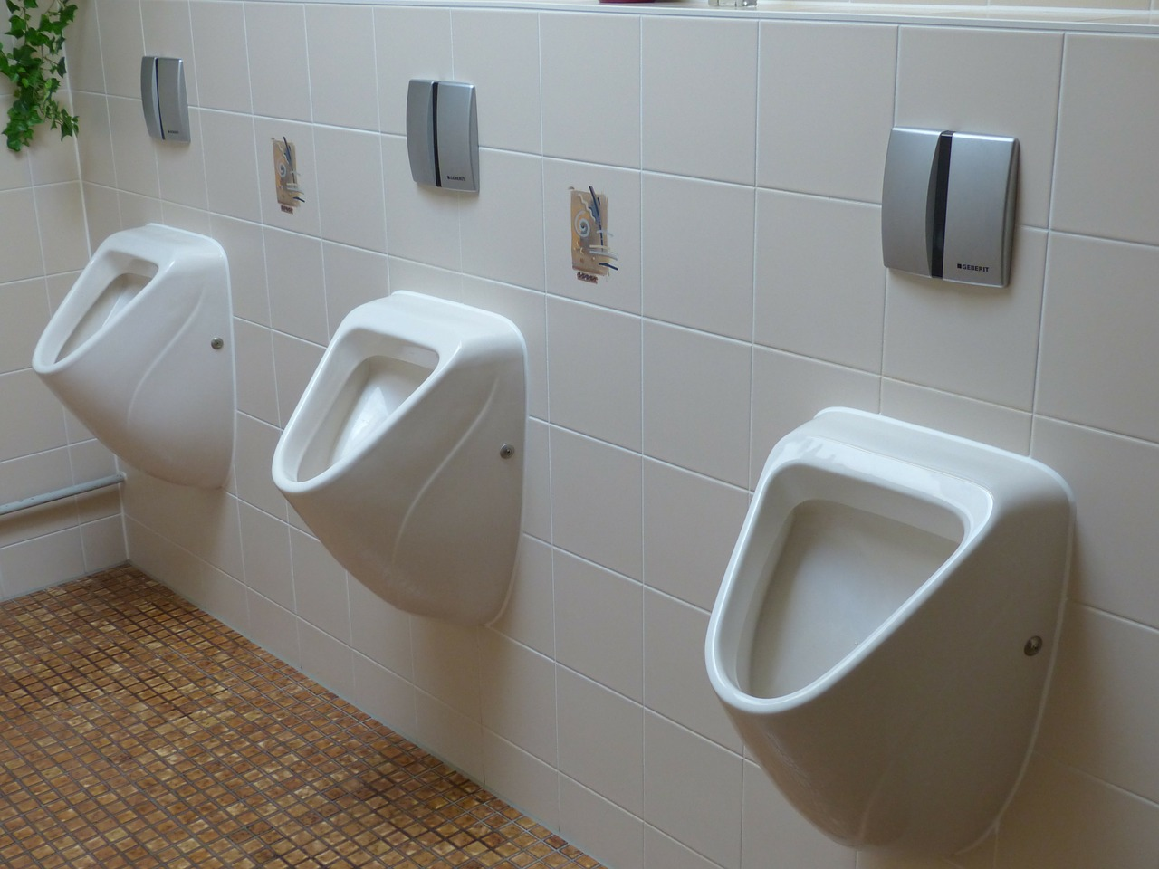 WC Sanierung Klo verstopft installateur in wien Verstopfung lösen verstopfung beheben plumber vienna
