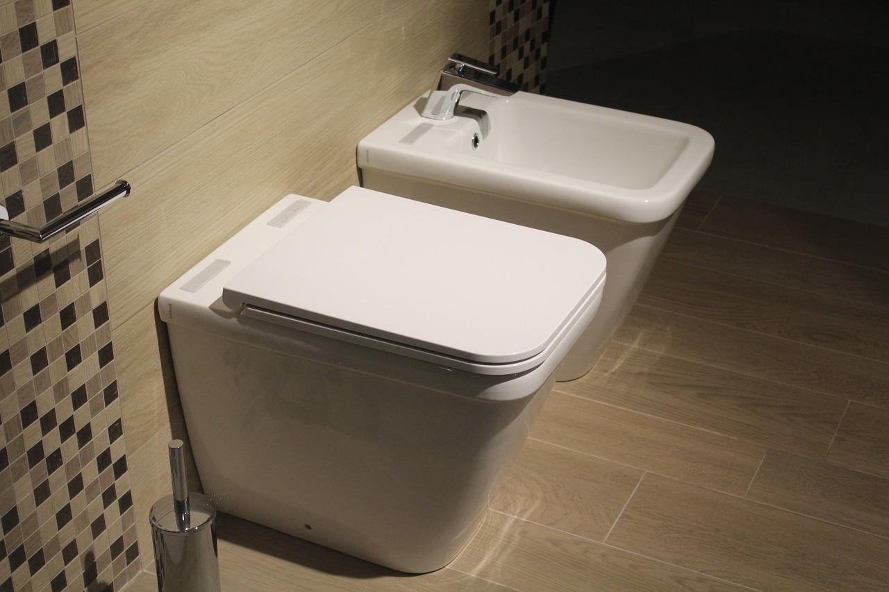 Klo verstopft installateur wien Verstopfung beheben Klo verstopft lösen plumber vienna